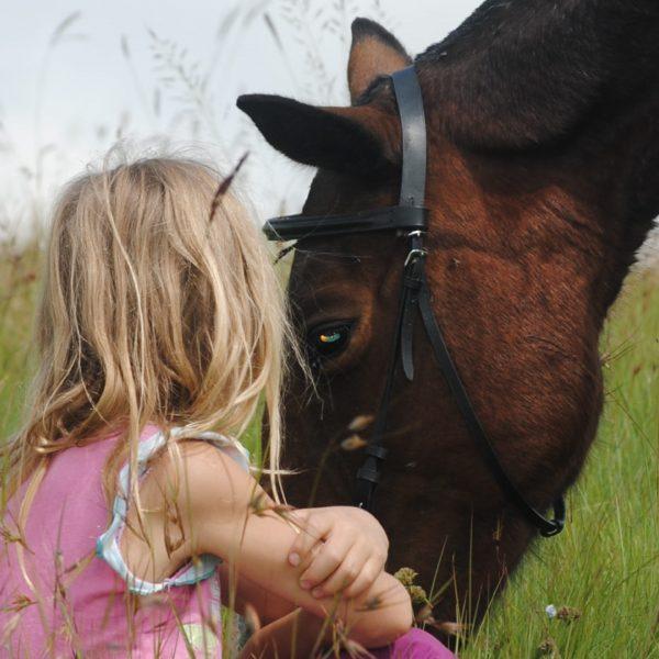 bimba seduta con cavallo-01
